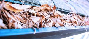 clogged eavestrough resulting in home problems